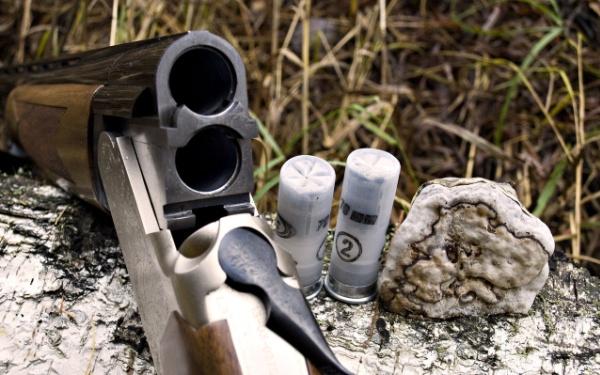 Ружье и патроны к нему