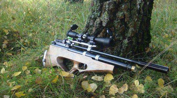 Ружье под деревом
