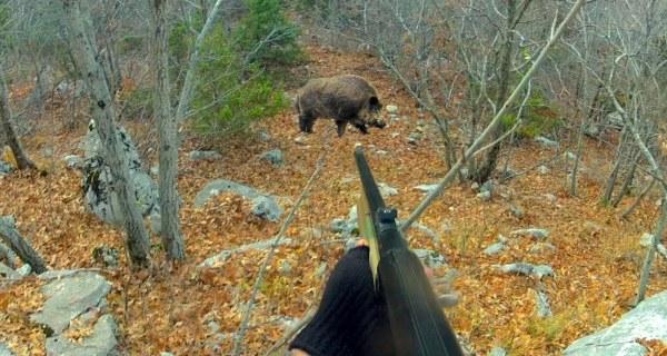 Охотник готовится стрелять
